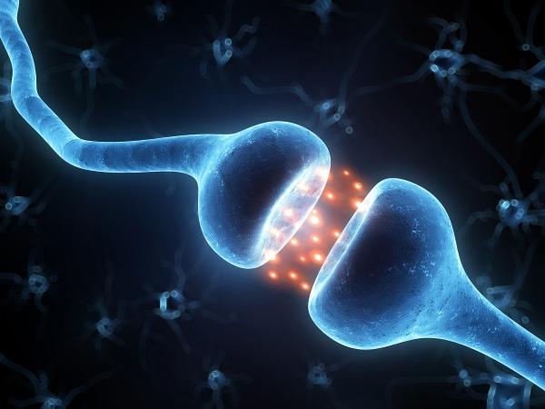 Нейротрансмиттеры