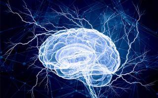 Что такое симптоматическая эпилепсия: виды и формы болезни