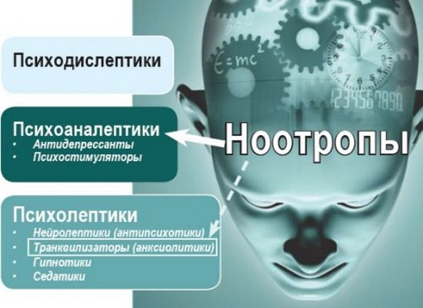 лекарства при ушибе головы