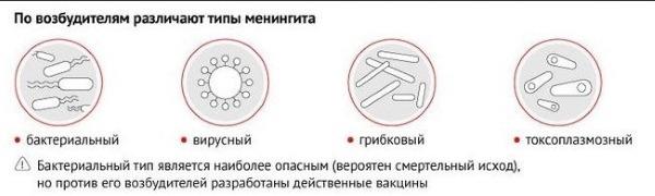 Типы менингита